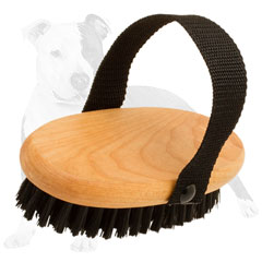 Wooden brush for inimitable dog look