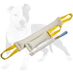Reliable bite puppy set of tugs made of fire hose