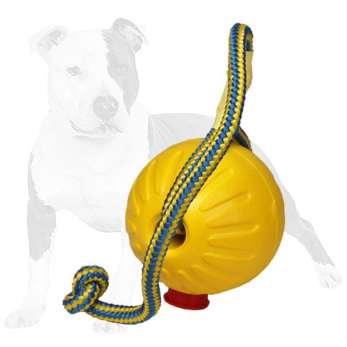Extra durable dog toy for playing