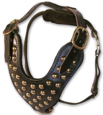 handmade leather dog harness for Training s