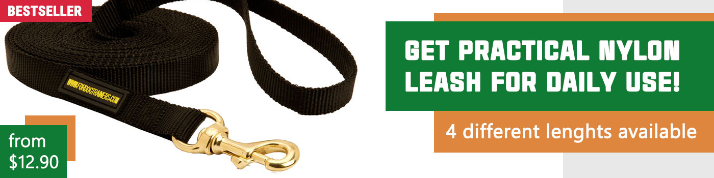 Nylon Dog Leash for Tracking